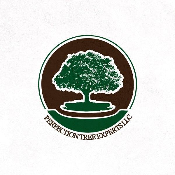 Perfection Tree Experts llc