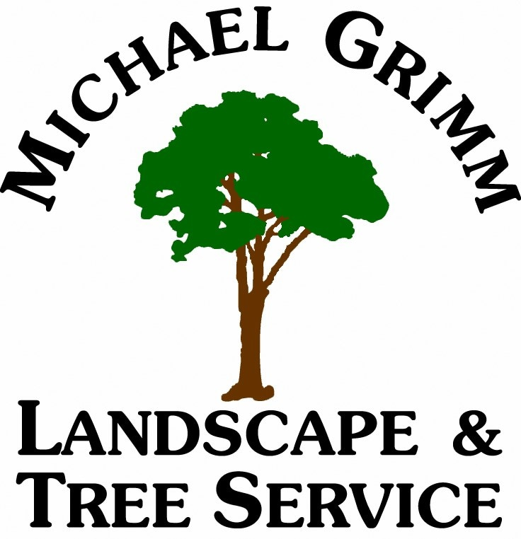 Michael Grimm Services, Inc.
