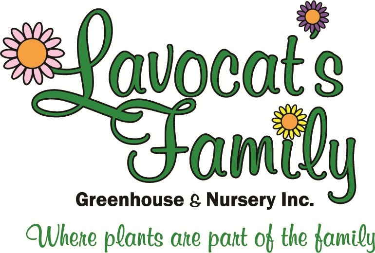 Lavocat's Family Greenhouse