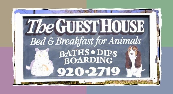 Guest House Bed & Breakfast for Animals