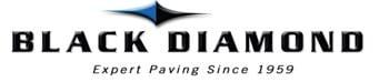 Black Diamond Group, Inc.