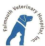 Falmouth Veterinary Hospital