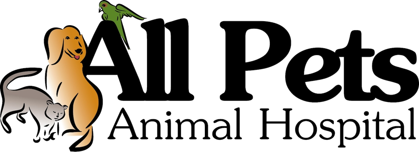All Pets Animal Hospital Reviews Bentonville Ar Angie S List