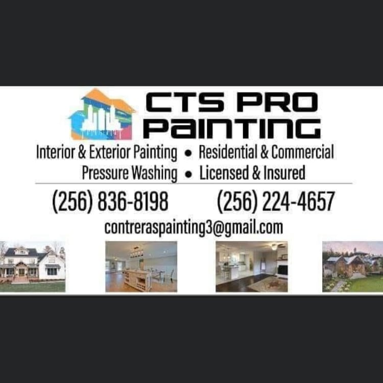 CTS PRO PAINTING