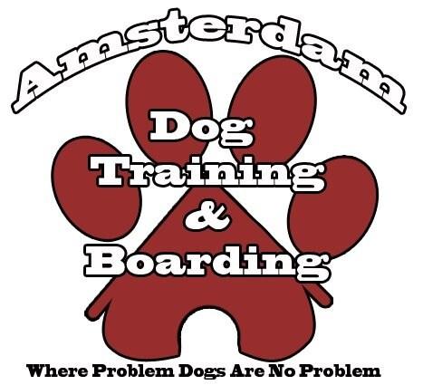 Amsterdam Dog Training & Boarding