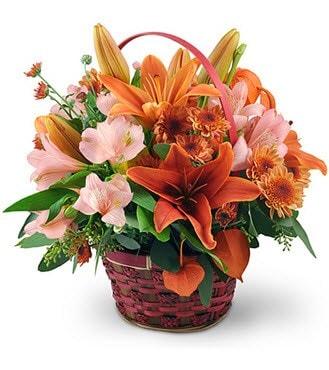 Amendola Florist By Lou