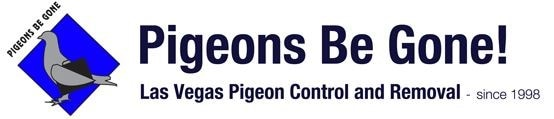Pigeons Be Gone
