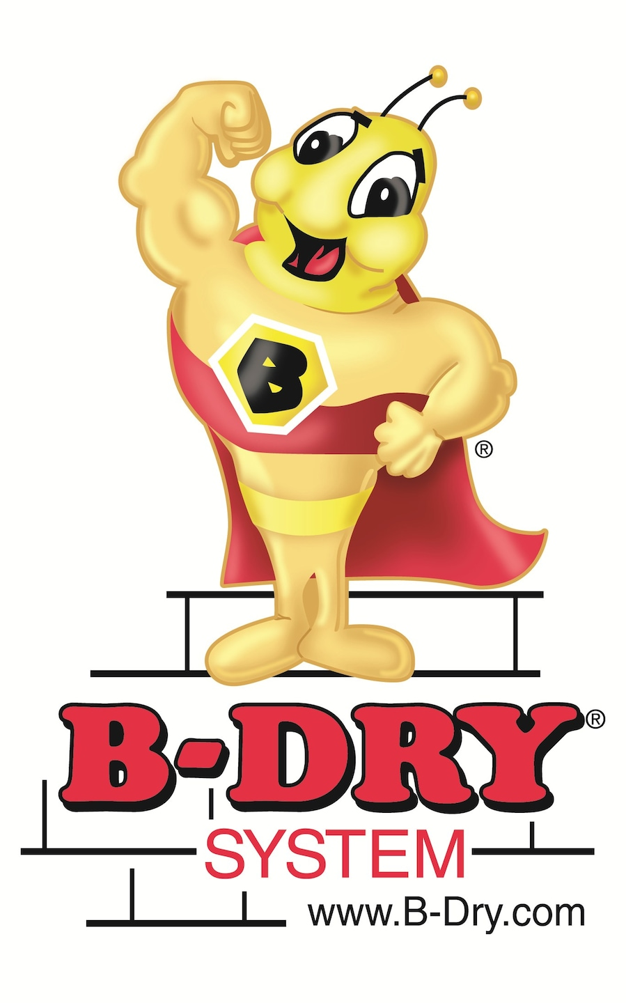 B-Dry System of Central & West Michigan Inc
