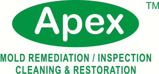 Apex Mold Specialists NY NJ CT