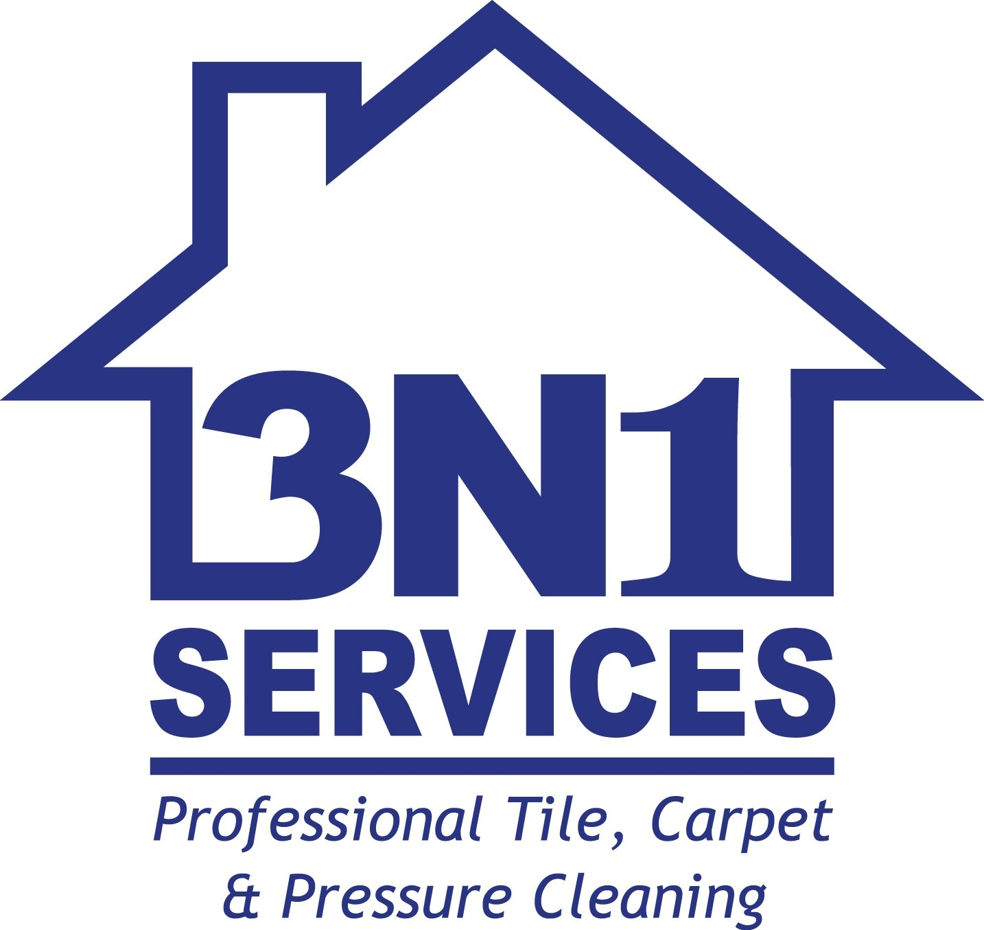 3N1 Services