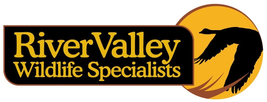 River Valley Wildlife Specialists LLC