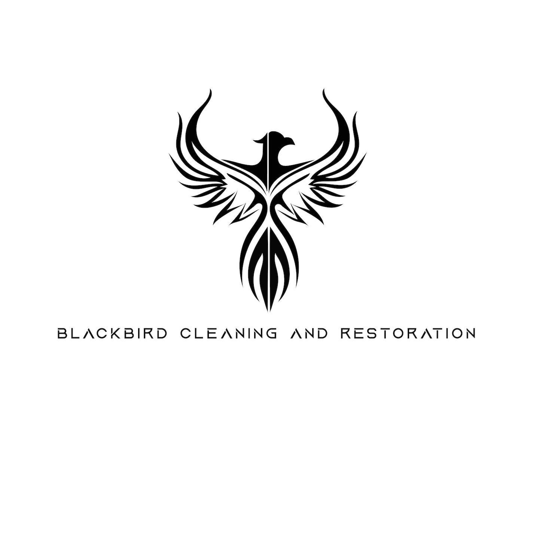 BlackBird Cleaning and Restoration