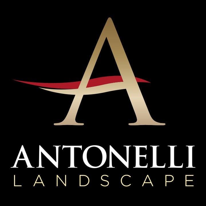 Antonelli Landscape