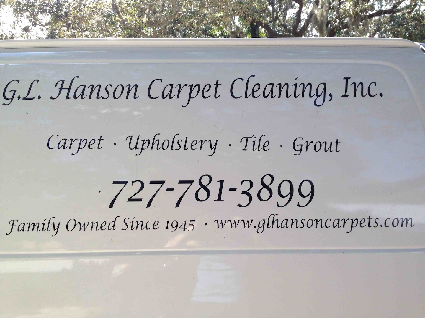 HANSON CARPET CLEANING INC