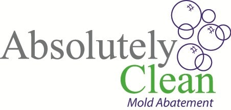 Absolutely Clean Mold Abatement