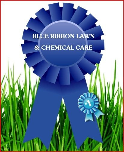 BLUE RIBBON CHEMICAL LAWN CARE