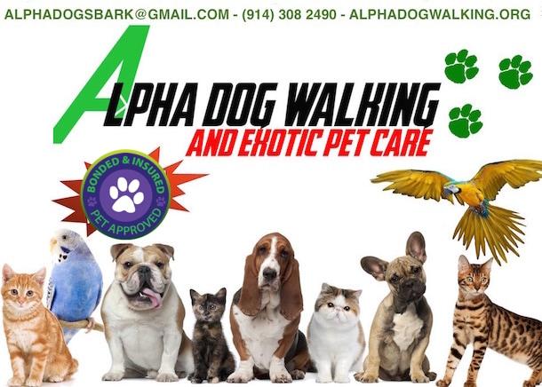 Alpha Dog Walking & Exotic Pet Care
