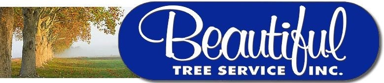 Beautiful Tree Service, Inc