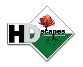 HDScapes