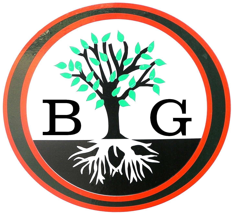 Big O Tree and Lawn Service