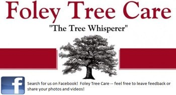 Foley Tree Care