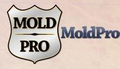 Mold Pro Chicago