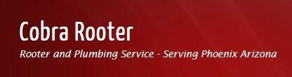 Cobra Rooter & Plumbing Service