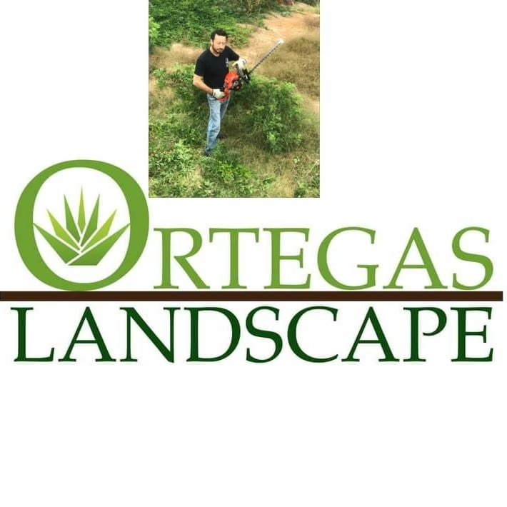 Ortega's Landscape