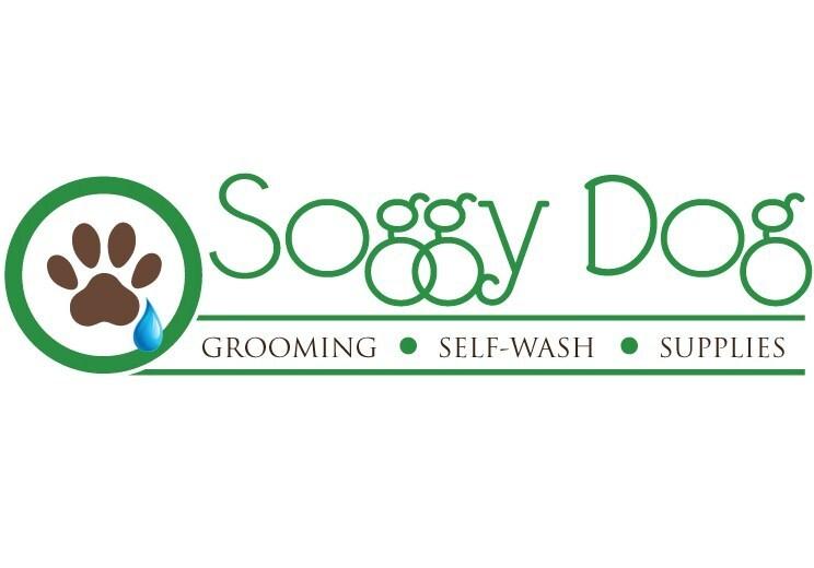 Soggy Dog