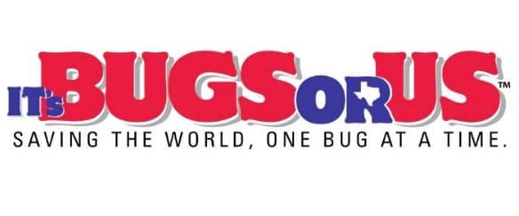 It's Bugs or Us - San Antonio