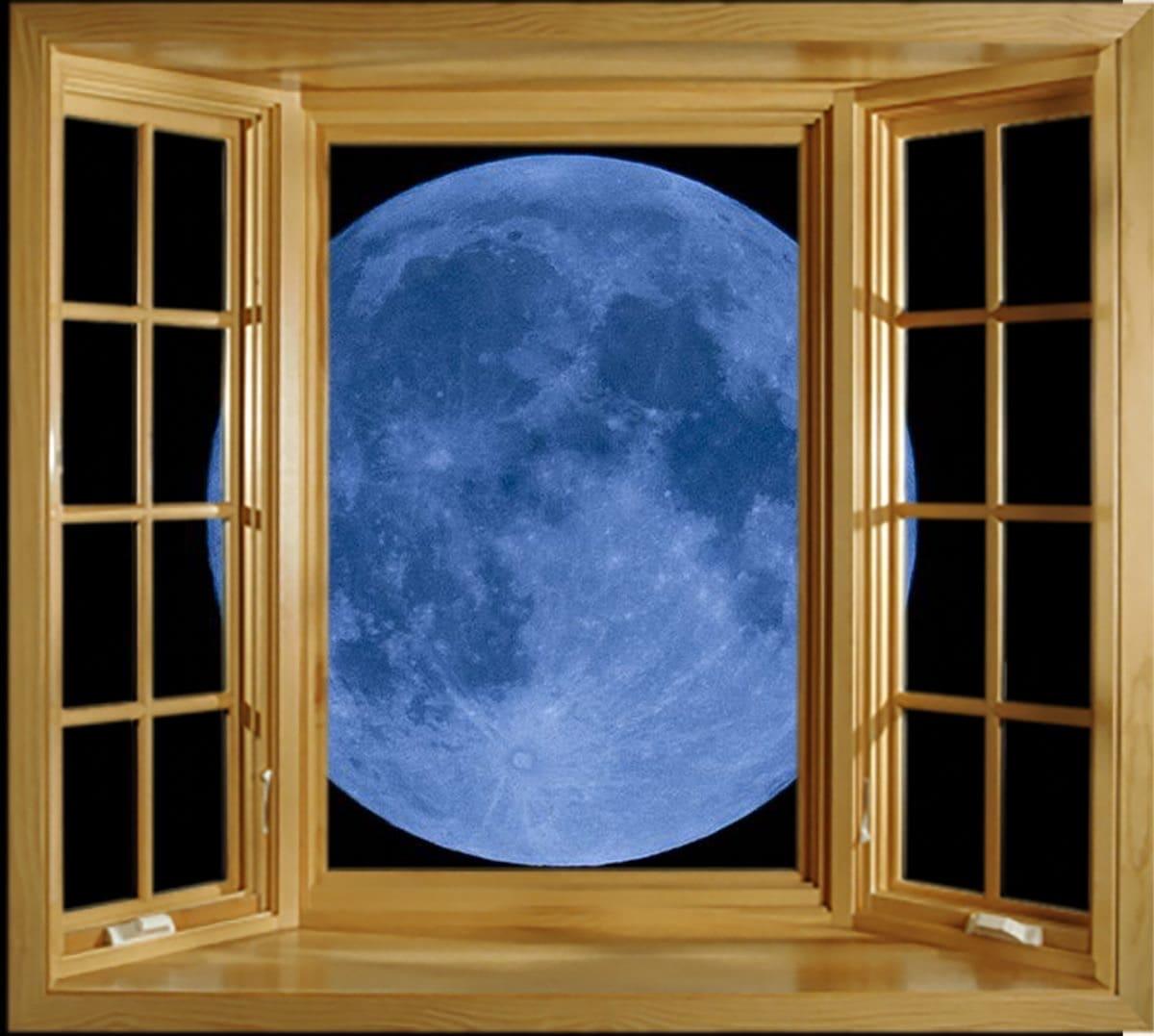 Blue Moon Installations
