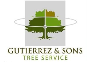 Gutierrez & Son's Tree Service and Landscaping