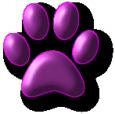 Purple Paw Grooming Shoppe