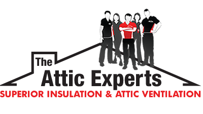 THE ATTIC EXPERTS logo