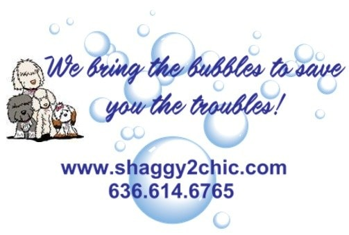 Shaggy 2 Chic Mobile Pet Grooming Spa Reviews Wentzville