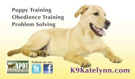 K9Katelynn Dog Training