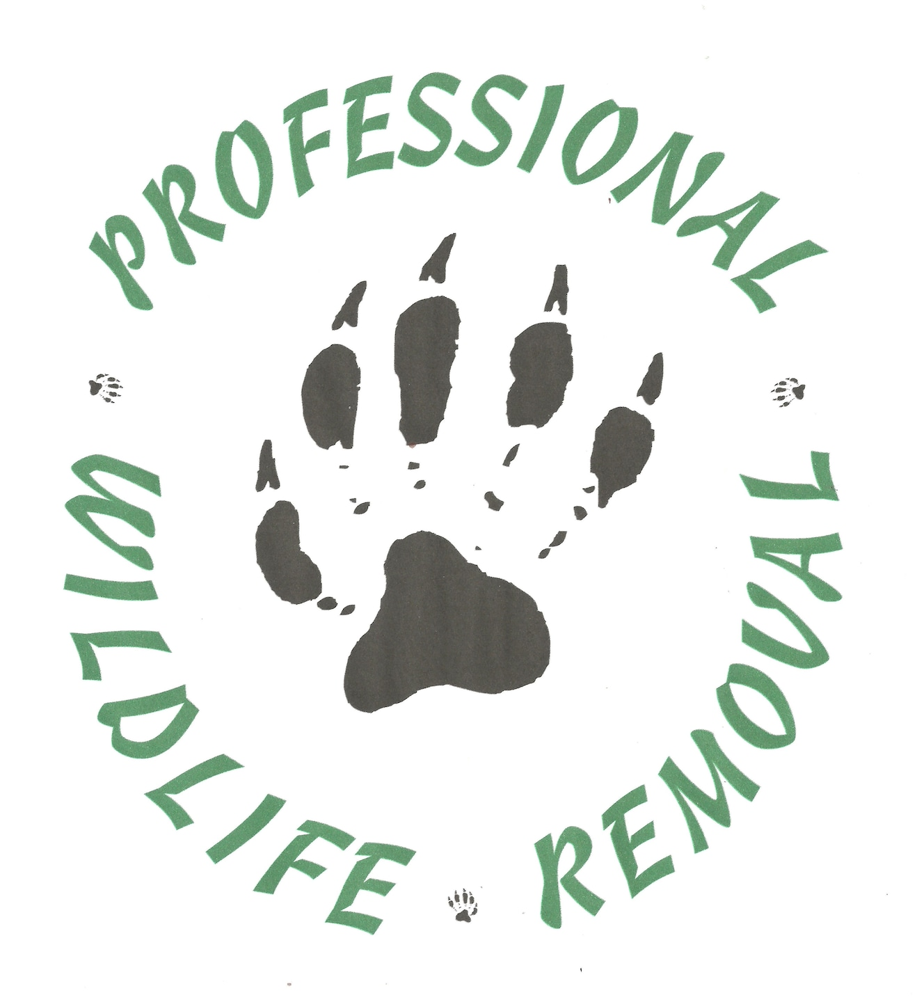 Professional Wildlife Removal Reviews