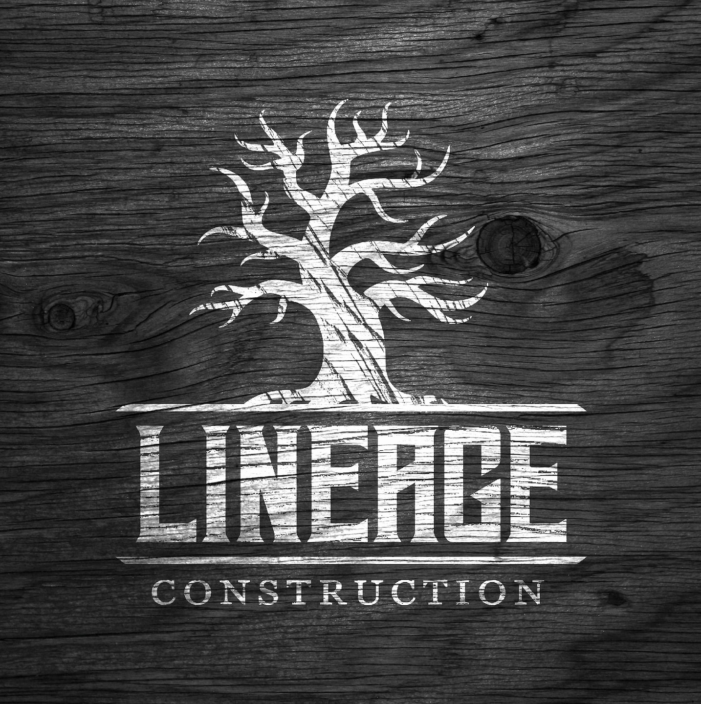 Lineage Construction