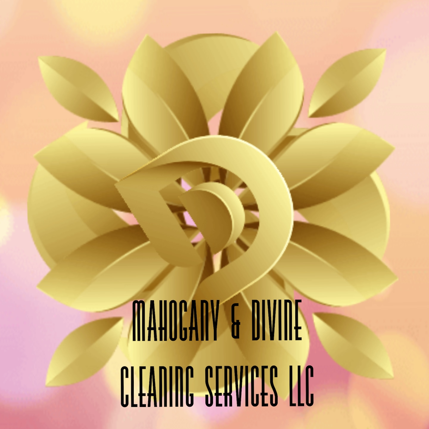 Mahogany & Divinie Cleaning Services LLC