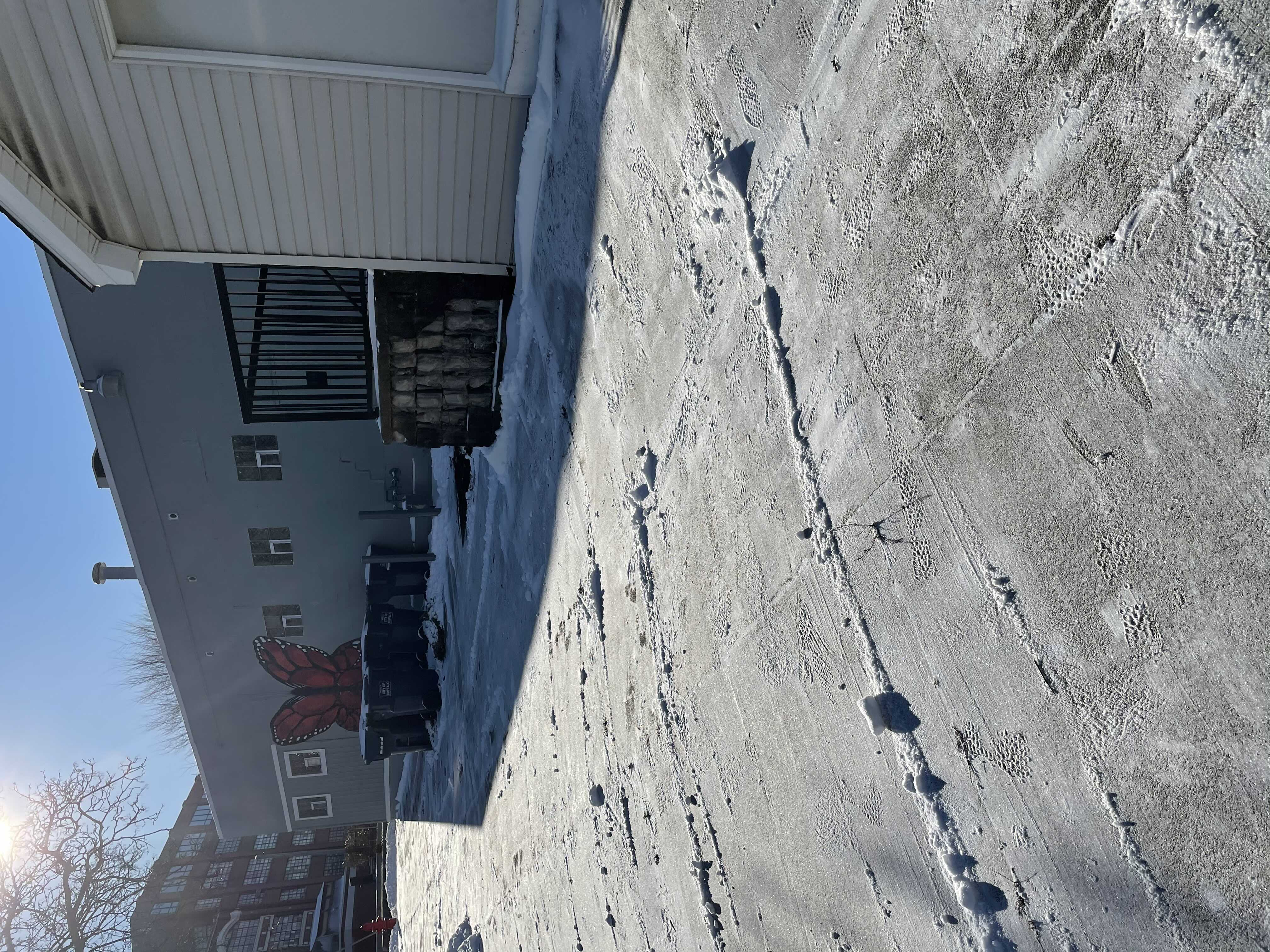 Snow Removal Project
