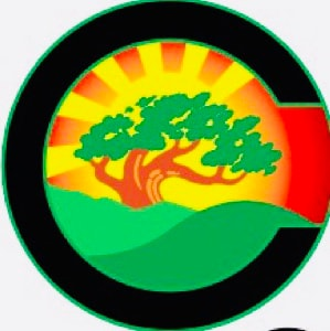 Christian Cut Tree Service