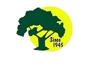Seymour Tree Service