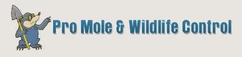 Pro Mole & Wildlife Control