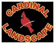Cardinal Landscape