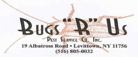 Bugs R Us Pest Services Inc