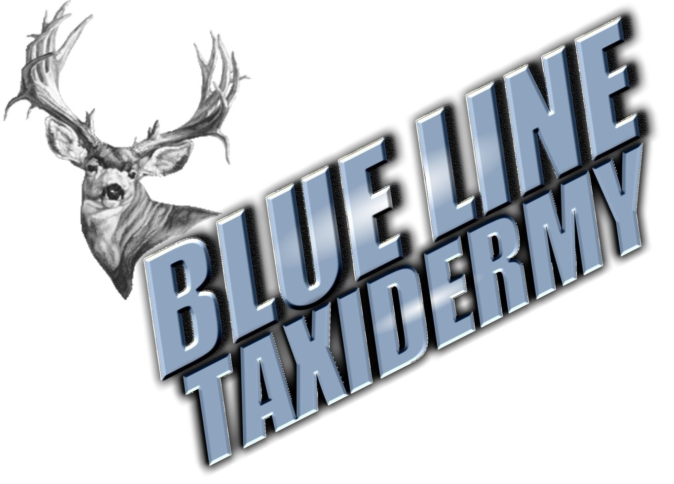 Blueline Taxidermy