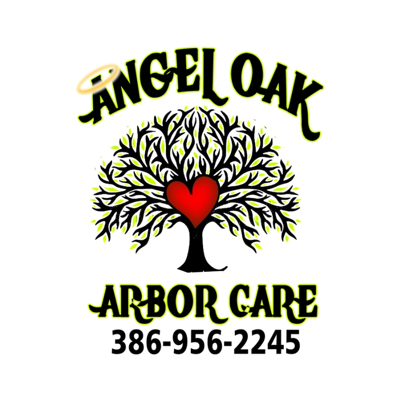 Angel Oak Arbor Care
