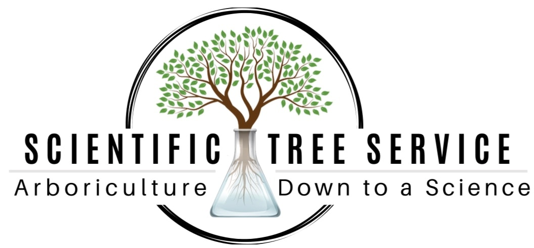 Scientific Tree Service