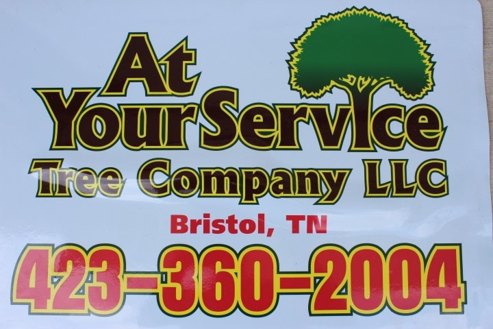 At You Service Tree Co. LLC