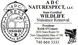 A. D. C. Naturespect LLC, Wildflife Removal
